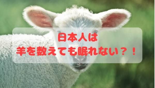 日本人は羊を数えても眠れない事実が判明!その理由は?