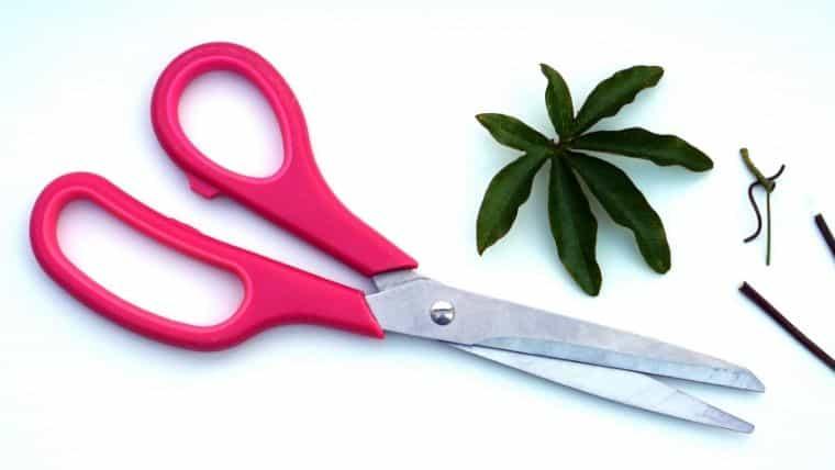 はさみの切れ味を簡単に回復させる方法と長持ちさせる方法
